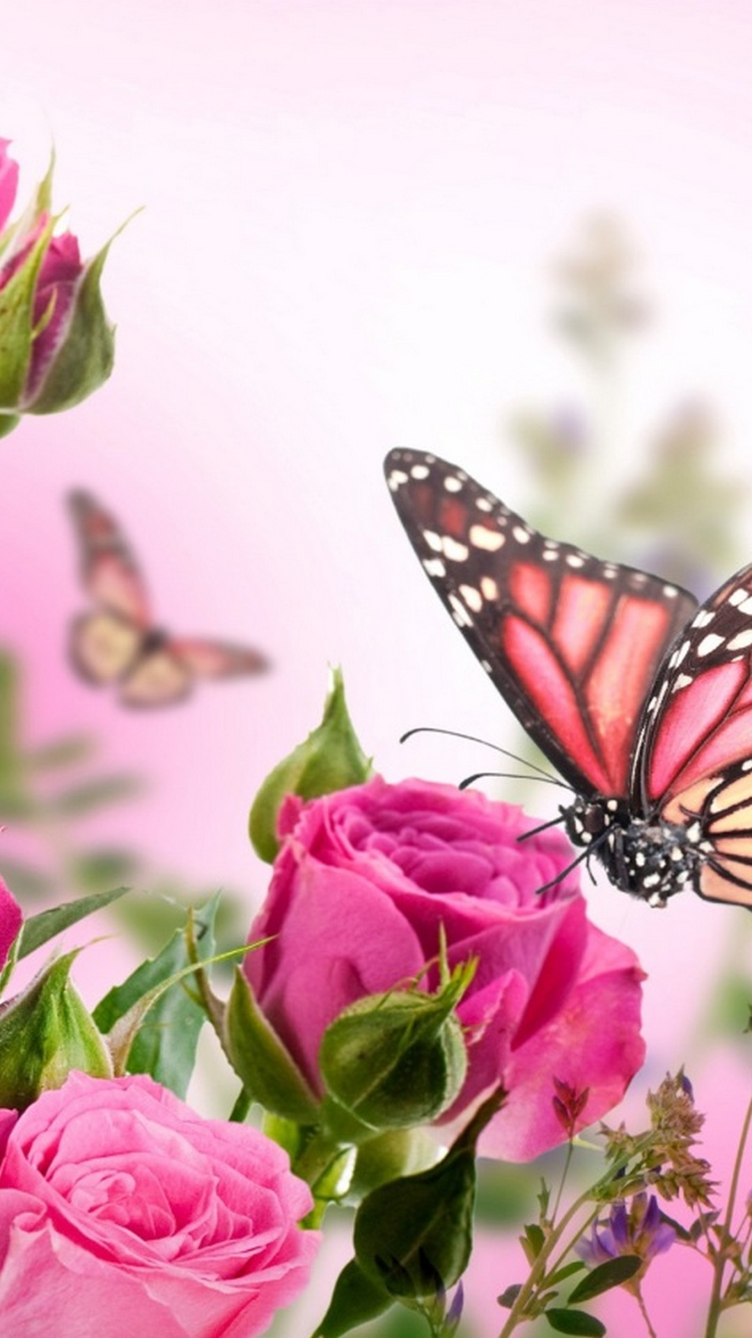 Android Wallpaper Pink Butterfly