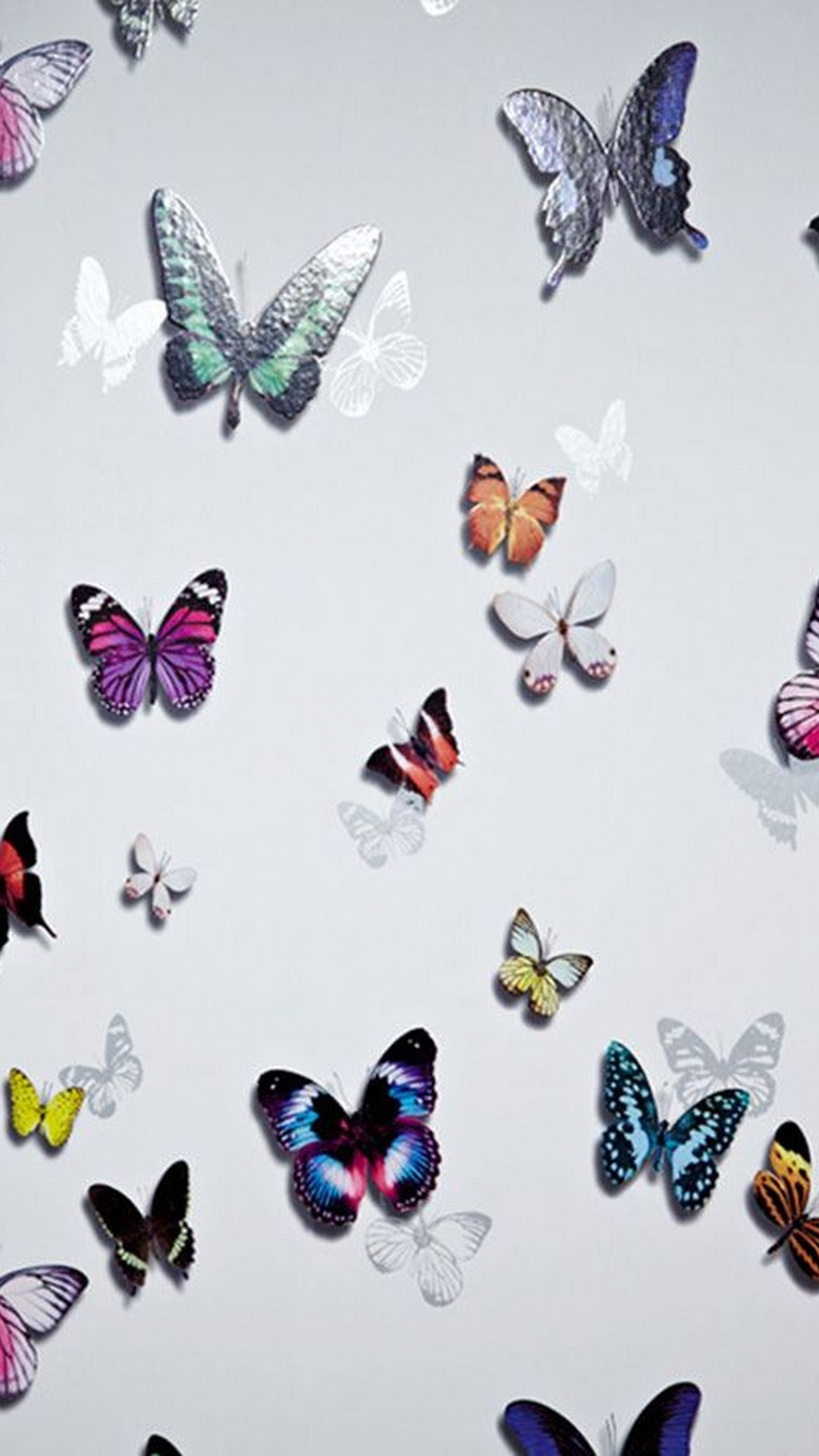 Beautiful Butterfly For Android