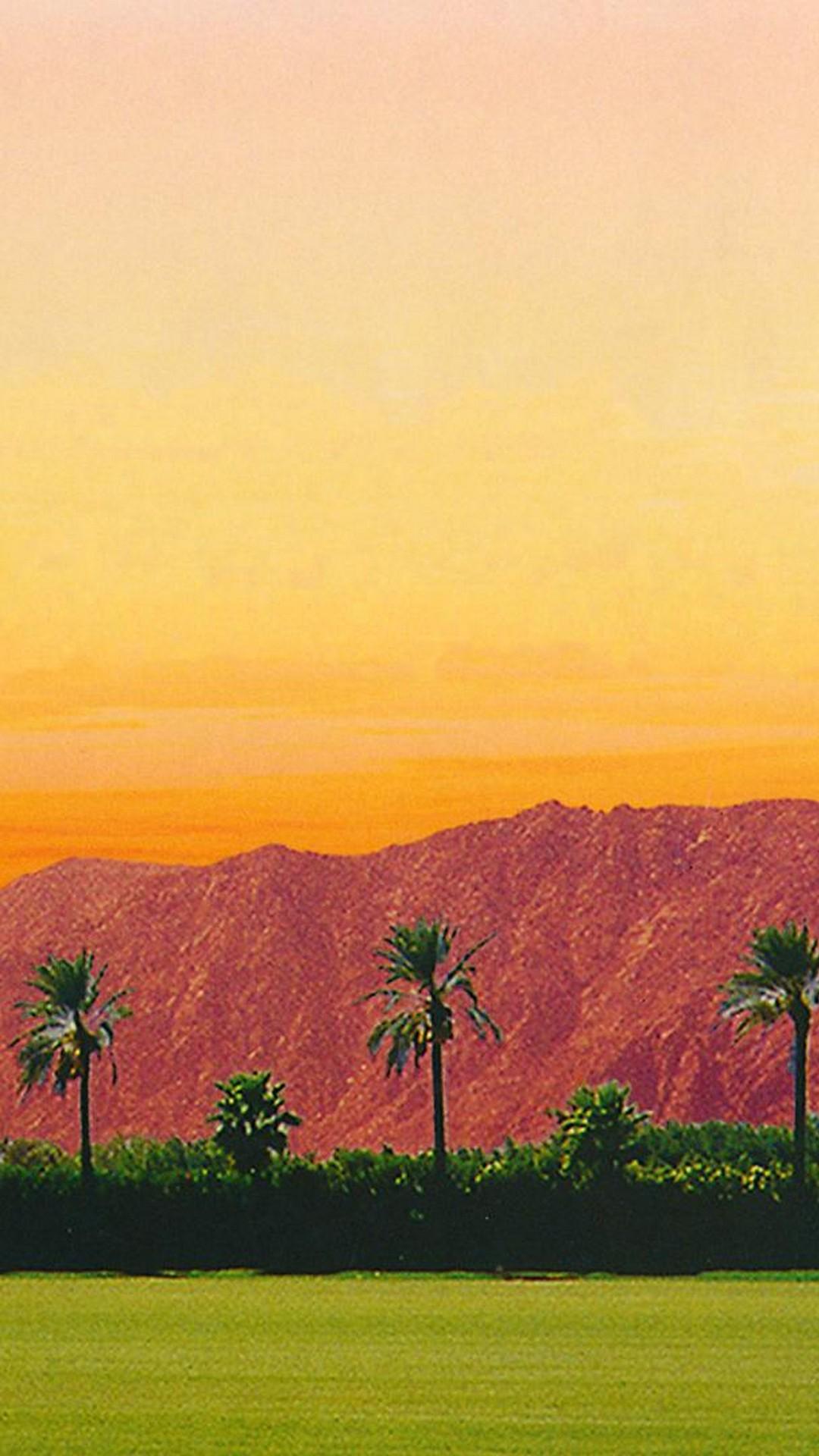 Coachella 2019 Wallpaper For Android