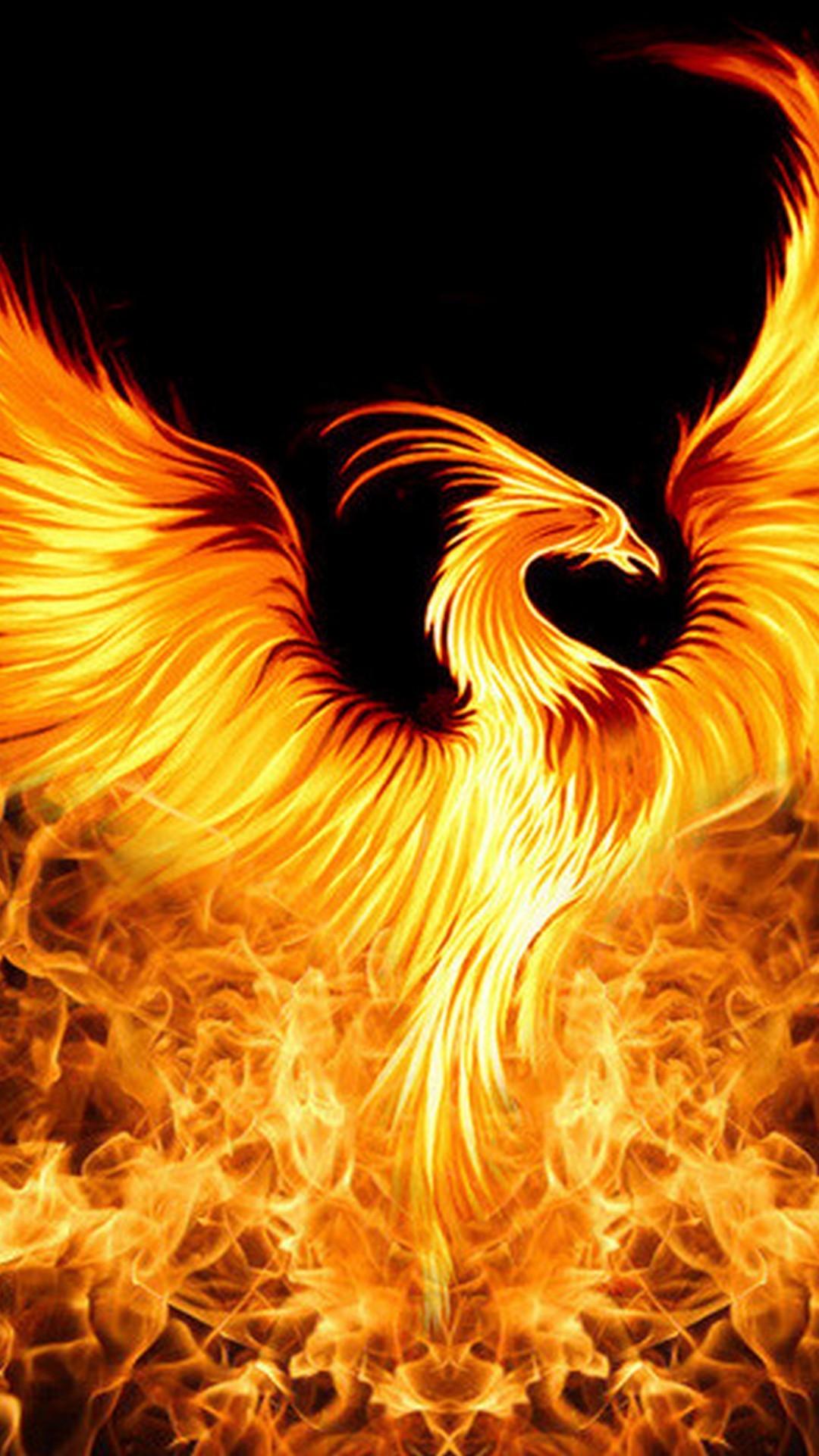 Golden Phoenix Backgrounds