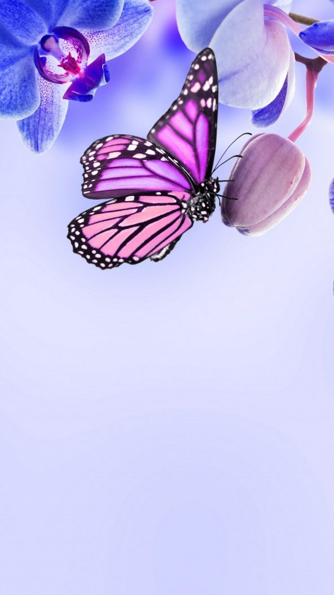 Blue & Purple Butterfly Wallpaper