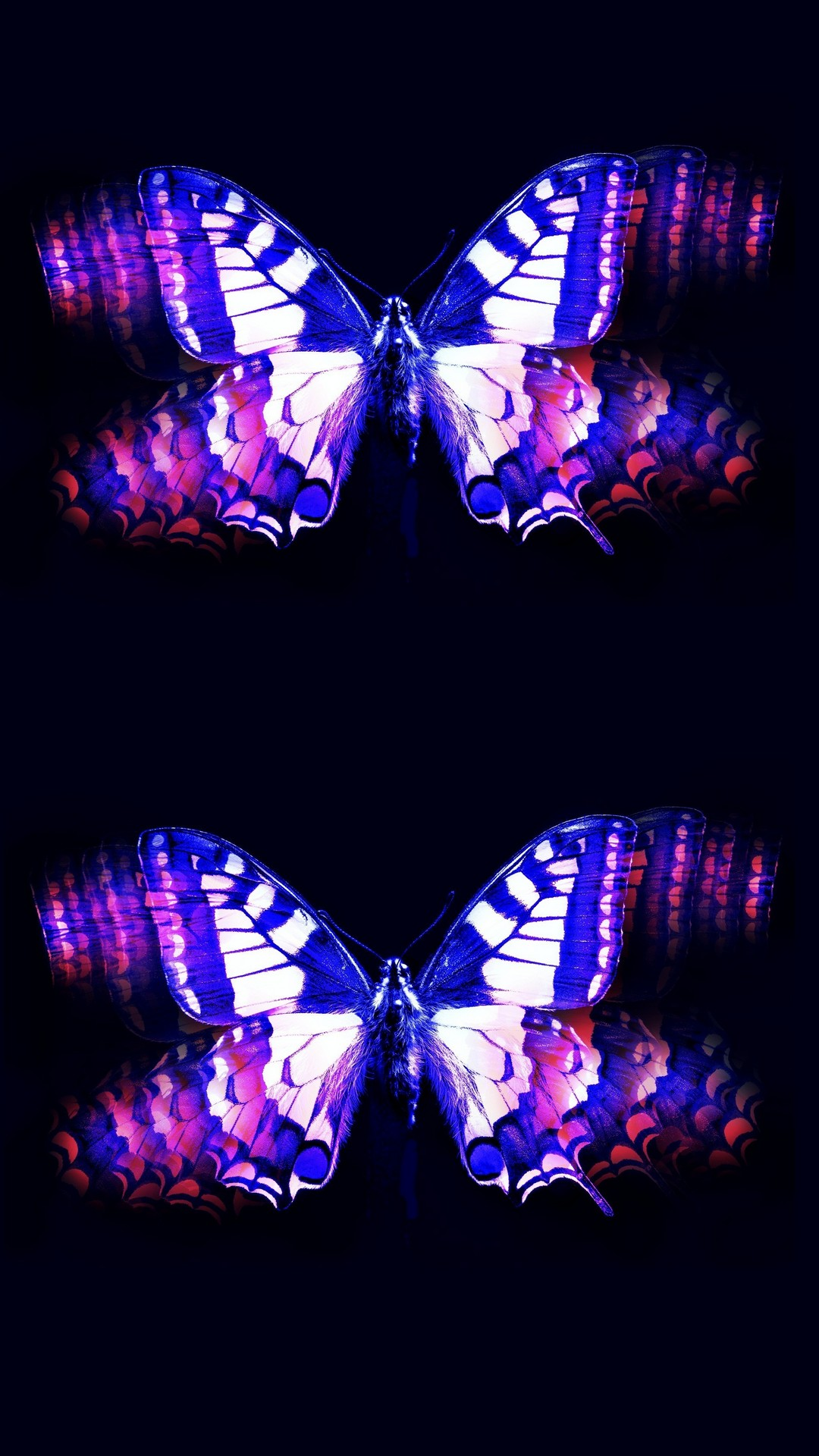 Wallpapers Phone Purple Butterfly